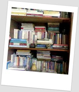 book shelf2