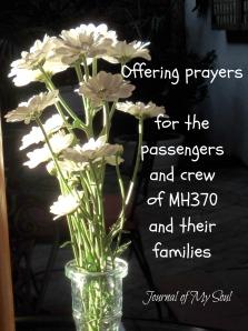 MH370-4