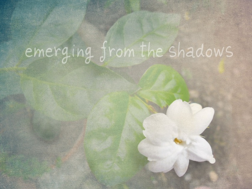 fading-textured-sampaguita