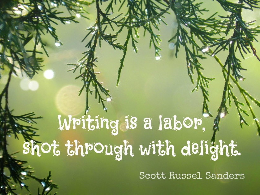 writing delight